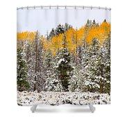 Teton Aspens Shower Curtain
