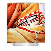 Teton Dacota Indian Woman Detail Shower Curtain