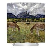 Teton Pastorale Shower Curtain