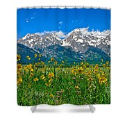 Teton Peaks And Flowers Shower Curtain
