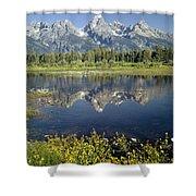 4m9310-teton Range Reflection, Blacktail Pond, Wy Shower Curtain