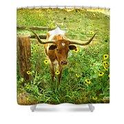 Texan Longhorn Shower Curtain