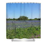 Texas Blue Bonnets Shower Curtain by Shawn Marlow