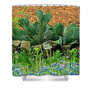 Texas Bluebonnets And Cactus Shower Curtain