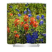 Texas Bluebonnets And Red Indian Paintbrush Shower Curtain