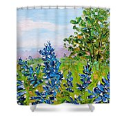 Texas Bluebonnets Shower Curtain