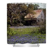 Texas Bluebonnets With Old Abandoned Shack Shower Curtain