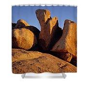 Texas Canyon Golden Boulders Shower Curtain