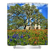 Springtime Ruins Shower Curtain