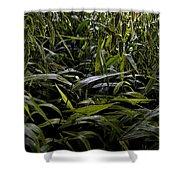 Texas Grasses Shower Curtain