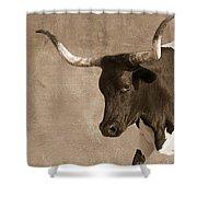 Texas Longhorn #6 Shower Curtain