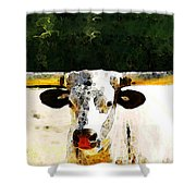 Texas Longhorn - Bull Cow Shower Curtain by Sharon Cummings