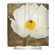 Texas Prickly Poppy Wildflower Shower Curtain