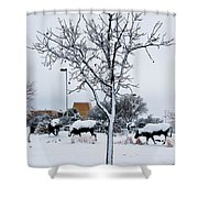 Heritage Grounds Shower Curtain