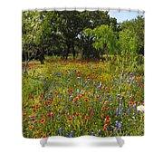 Texas Wildflower Medley Shower Curtain