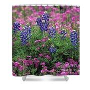 Texas Wildflowers 3 - Fs000930 Shower Curtain