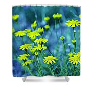 Texas Wildflowers V4 Shower Curtain