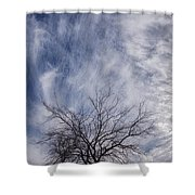 Texas Winter Clouds Shower Curtain