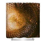 Texture No.5 Color Version Shower Curtain
