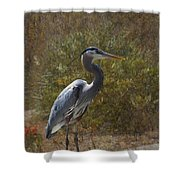 Textured Blue Heron Shower Curtain