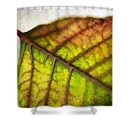 Textured Leaf Abstract Shower Curtain