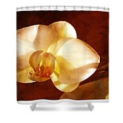 Textured Orchid Shower Curtain