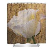 Textured Rose Shower Curtain