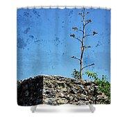 Textured Ruins Shower Curtain