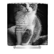 Thanksgiving Kitty Bw Shower Curtain