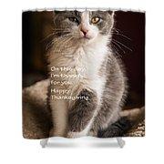 Thanksgiving Kitty Shower Curtain