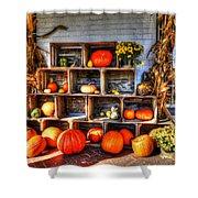 Thanksgiving Pumpkin Display No. 1 Shower Curtain