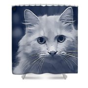 That Cat Shower Curtain