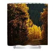 The Golden Road Shower Curtain