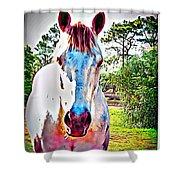 That Horses Face Shower Curtain