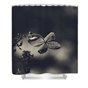 That Special Warmth Shower Curtain by Laurie Search