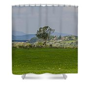 Thatched Roof - County Mayo Ireland Shower Curtain