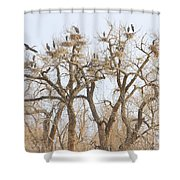 Thats A Lot Of Heron Shower Curtain