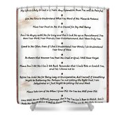 The 10 Commandments For Pets On Red Marble Shower Curtain