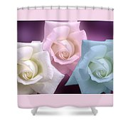 The 3 Graces Shower Curtain by Joan-Violet Stretch