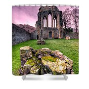 The Abbey  Shower Curtain by Adrian Evans