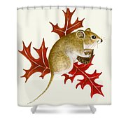 The Acorn Mouse Shower Curtain