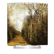 The Allee At Dawn Shower Curtain