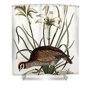 The American Partridge Shower Curtain