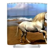 The Andalusian Shower Curtain