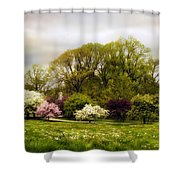 The Apple Orchard Shower Curtain