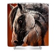 The Arabian Horse Shower Curtain