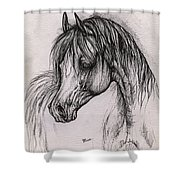 The Arabian Horse With Thick Mane Shower Curtain