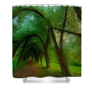 The Arch Of Heaven Shower Curtain