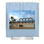 The Arches On The Playa Shower Curtain