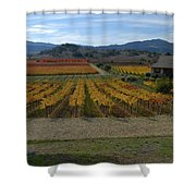 The Artist In The Vineyard Shower Curtain